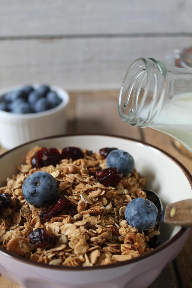 Granola_Cranberries_4